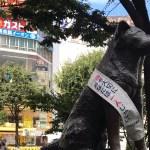 Tokyo Now #13 : Shibuya, still less scrambled