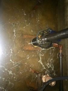 Debris build up in elevator pit