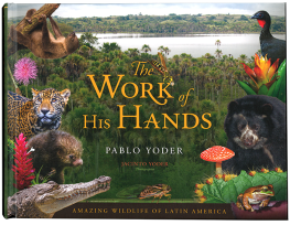 The Works of His Hands