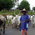 Hoodlums Kill Fulani Herdsman, Throw Body Into River In Delta State