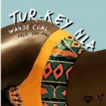 MUSIC: Wande Coal – Turkey Nla