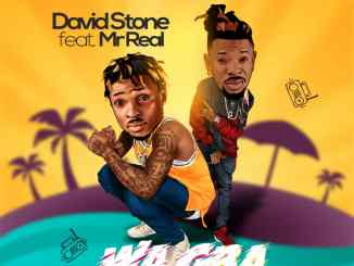 David Stone ft. Mr Real – Wa Gba