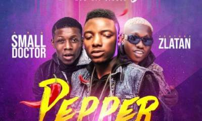 Small Terry ft. Zlatan Ibile, Small Doctor – Pepper