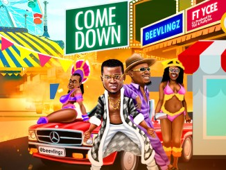 Beevlingz ft. Ycee - Come Down