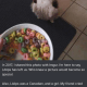 Loops Cat Death: the Lööps Cat Has Passed Away, See Her Best Memes