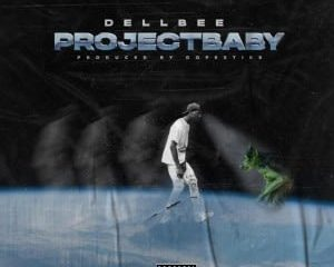 Dellbee – Project Baby