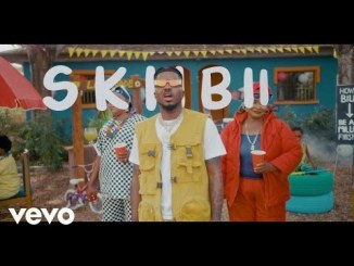 video-skiibii-–-are-you-vhere-tgtrends_com_ng