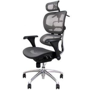 เก้าอี้สำนักงานเพื่อสุขภาพ เออร์โกเทรน รุ่น บียอร์นซิกเนเจอร์-01GMM สีเทา
