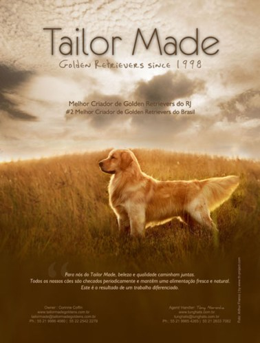 Propaganda para revista Tailor Made Goldens