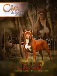 Image capa Jahde revista CDF