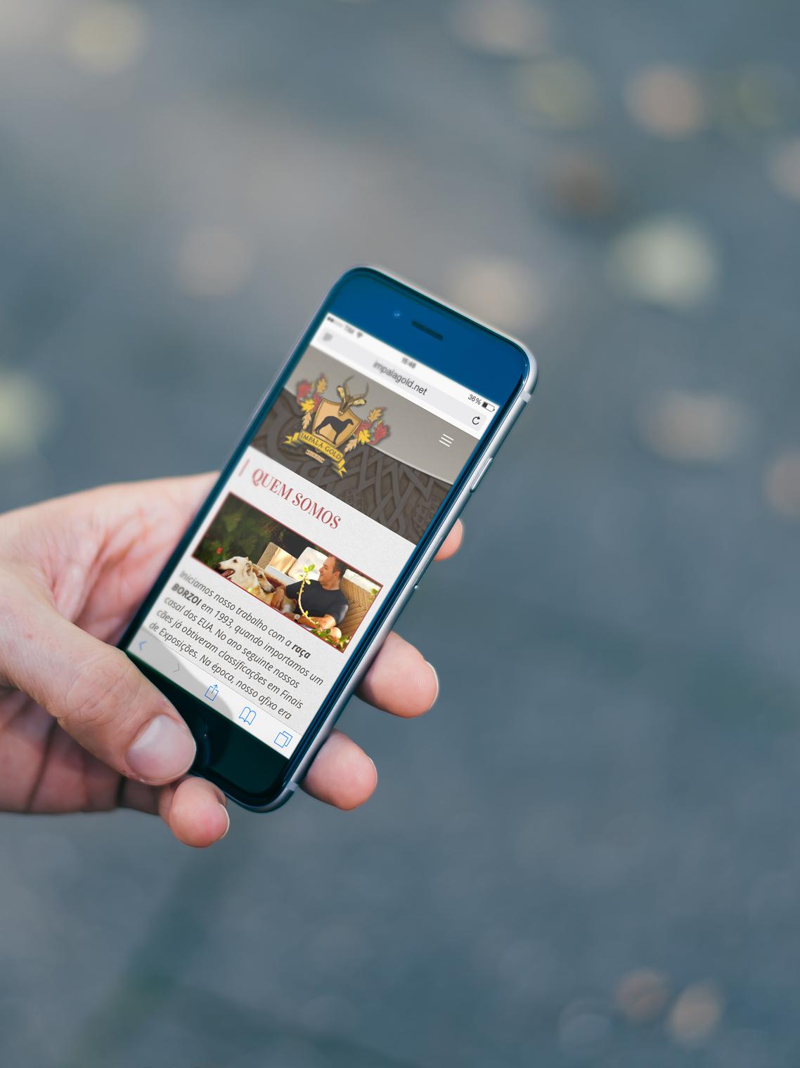 imagem celular mostrando website responsivo