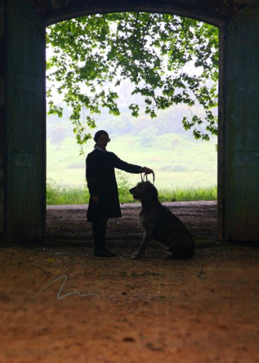 imagem homem e cão