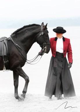 Foto cavalo e treinador