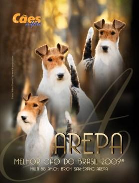 Imagem Capa Arepa CDF