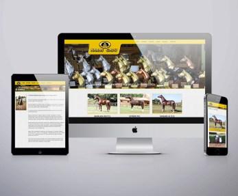 imagem computador, tablet e celular mostrando o layout responsivo criado por TH-PROJECT