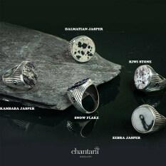 Kiwi Stone, Zebra Jasper, Dalmatian Jasper, Kambaba Jasper, Snow Flake เครื่องประดับ แหวนแฟชั่น แหวนชาย แหวนหินแท้ แหวนอัญมณี แถมฟรี ผ้าเช็ดเครื่องประดับ จัดส่งฟรี