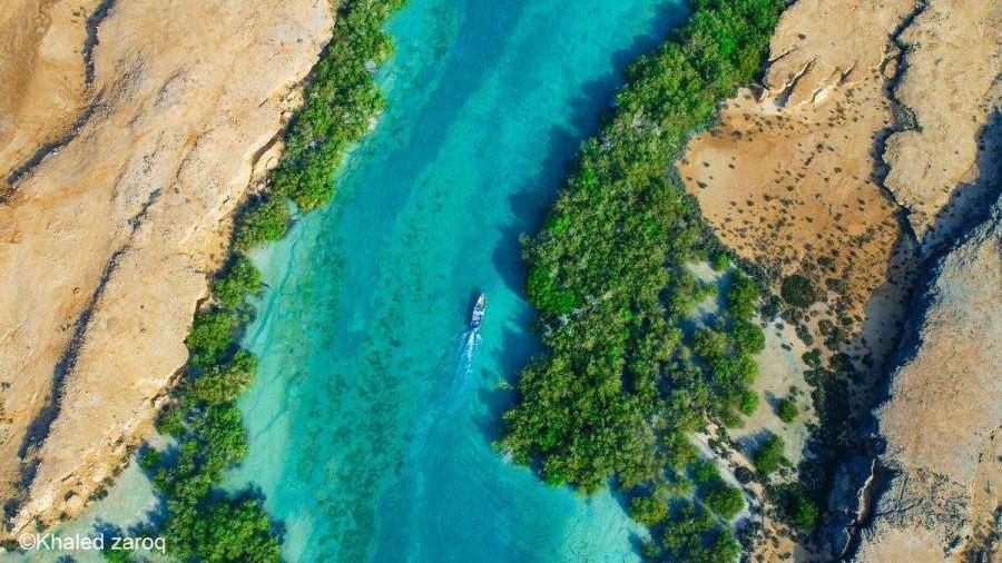 وزير الثقافة السعودي: سنسجل محمية جزر فرسان في اليونسكو