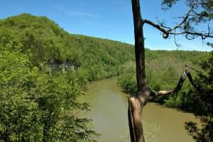 Overlooking River