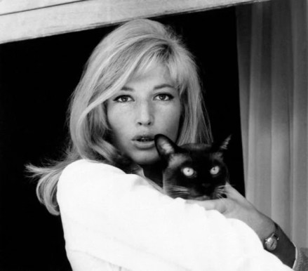 monica-vitti-with-cat