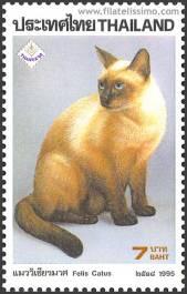 thai-cat-breed-stamp-thailand