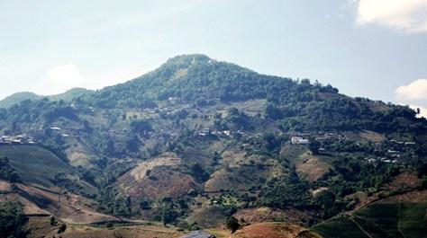 Doi Mae Salong, Thailand: Tee-Plantagenarbeiter machen eine Pause