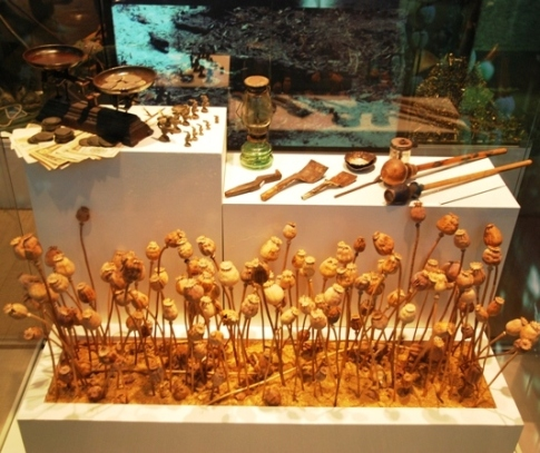 Opium-Exponate, Schaukasten, Hall of Inspiration, Doi Tung Entwicklungszentrum