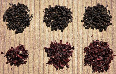 Black Pearls/Hibiscus Tee 3 Sample-Ratios