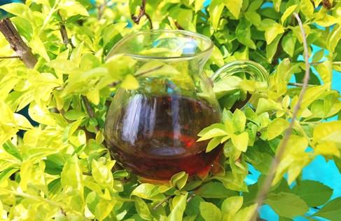 Schwarzer Tee / Hibiskusblüten Tee-Kreation im Grünen