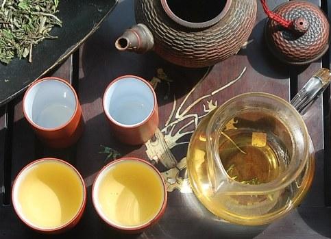 Pai Mu Tan (White Peony) Weißer Tee in Gong Fu Cha Teezeremonie
