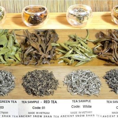 4 Tees von mehr als 100 Jahren alten
