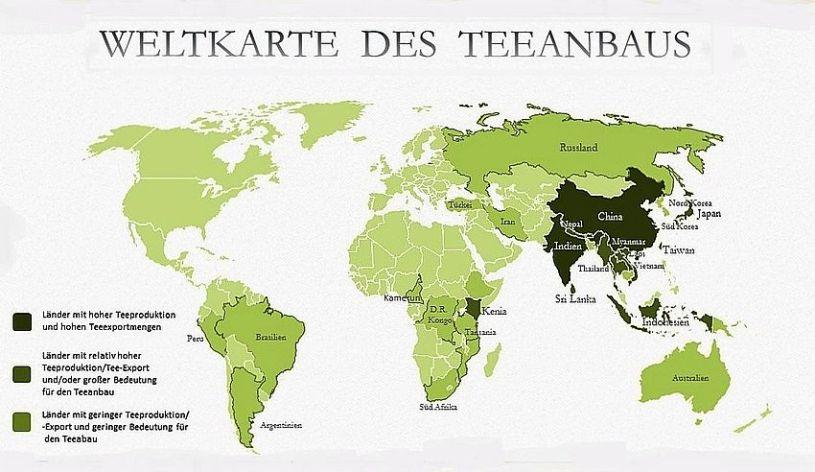 Weltkarte des Teeanbaus - Verbreitung der Teepflanze in Südostasien und anderen Regionen der Weltion