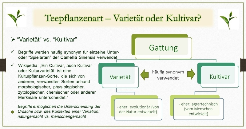 Varietaet vs. Kultivar - Schaubild