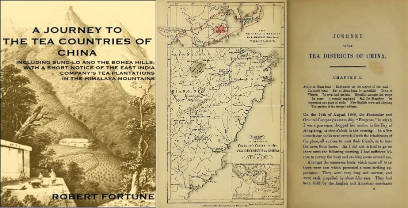 Robert Fortune - A Journey to the Tea Countries of China