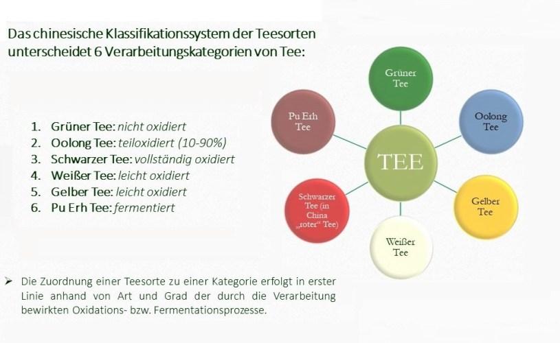 Das chinesische 6-Kategopriensystem der Teesorten 6 - 6 Verarbeitungskategorien von Tee
