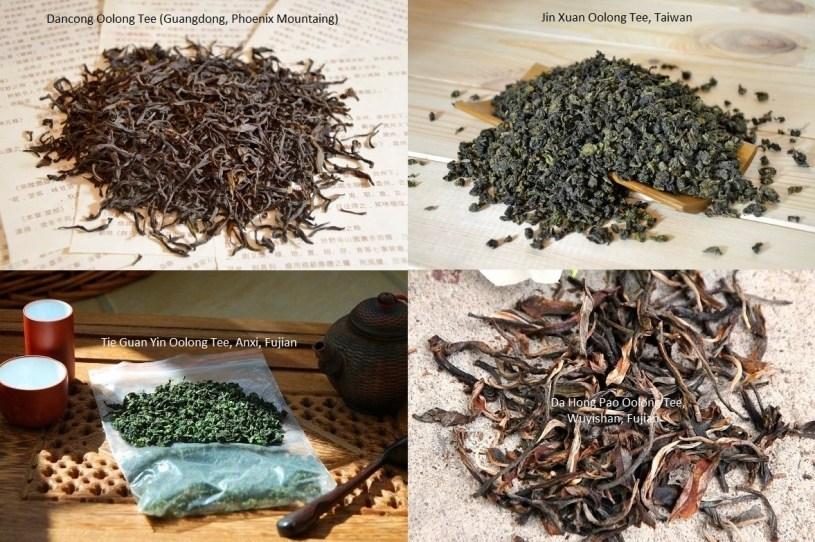 4 Herkunftsregionen - 4 Arten von Oolong Tee