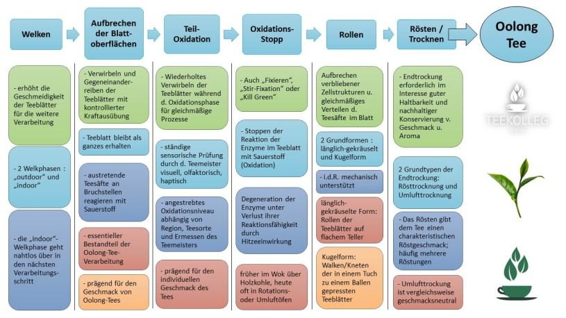 Oolong Tee Verarbeitung - Schritt für Schritt mit Kommentaren, graphische Übersicht