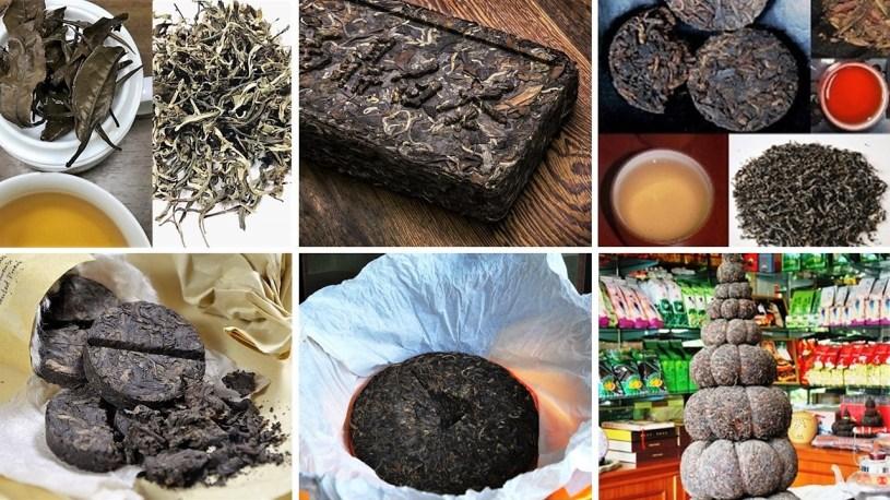 Pu Erh Tee - verschiedene Pressformen und ungepresst, sheng und shou in der Tasse