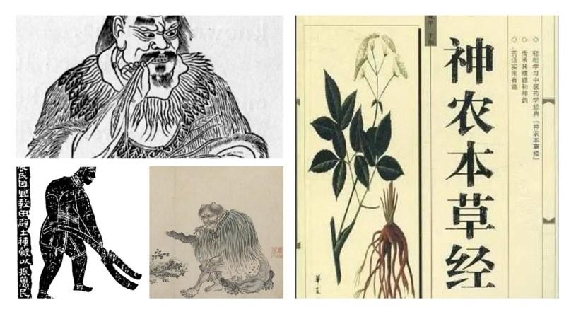 Shennong-Darstellungen als Kräuterforscher und mythischer Ur-Farmer / Shennong Beng Cao Jing