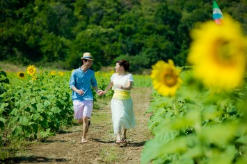 Yuen and Chan's Sunflower Field pre-wedding (prenuptial, engagement session) in Saraburi, Thailand. Sunflower Field_Saraburi_wedding_photographer_Yuen and Chan_1997.TIF