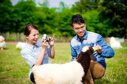 Jill and Daniel's Sheep Land Khao Yai pre-wedding (prenuptial, engagement session) in Nakhon Ratchasima, Thailand. Sheep Land Khao Yai_Nakhon Ratchasima_wedding_photographer_Jill and Daniel_34.TIF