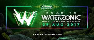 Road to Waterzonic, DJ, Music Festival