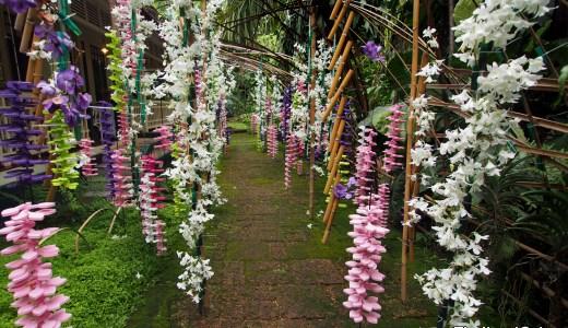 花文化 博物館 & ティーサロン (The Museum of Floral Culture)