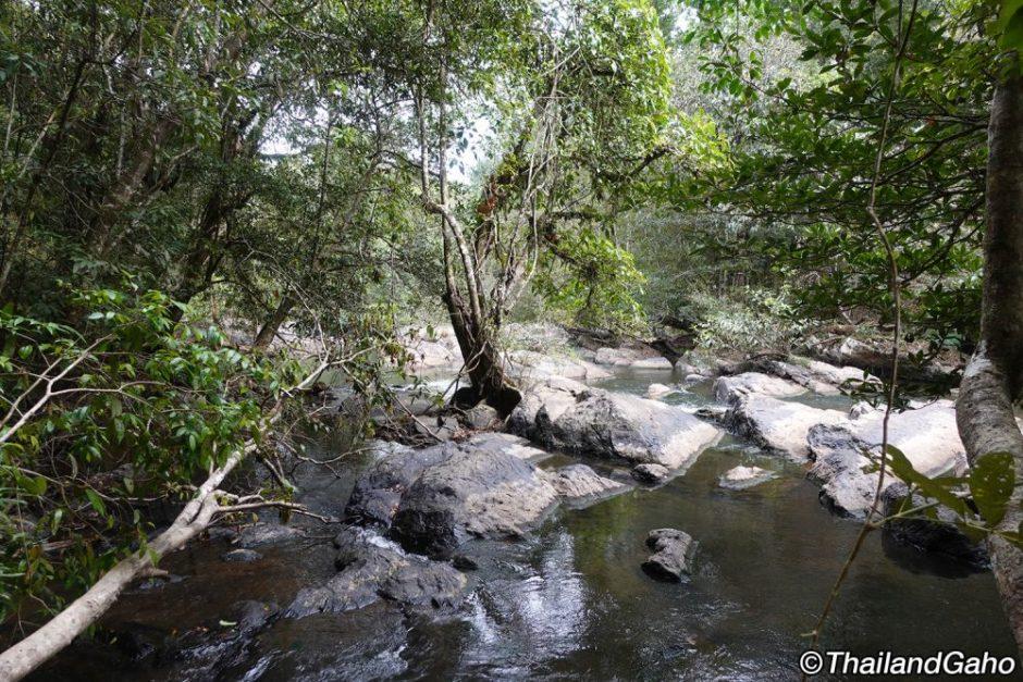 カオヤイ 国立公園