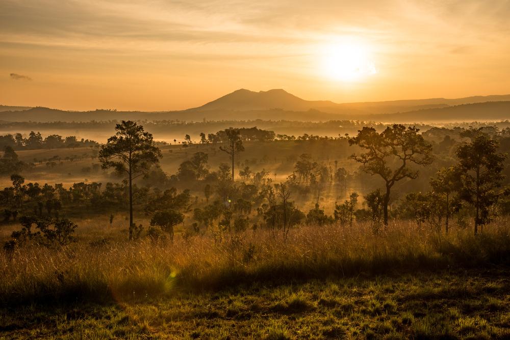 อุทยานแห่งชาติทุ่งแสลงหลวง (Thung Salaeng Luang)