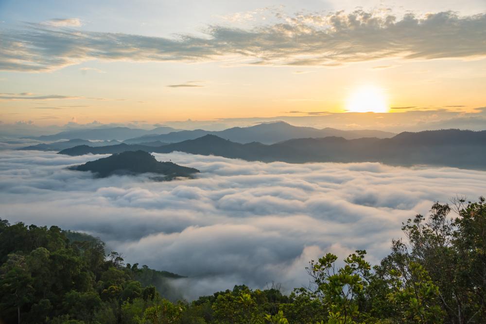 Aiyerweng Mist (ทะเลหมอกอัยเยอร์เวง)