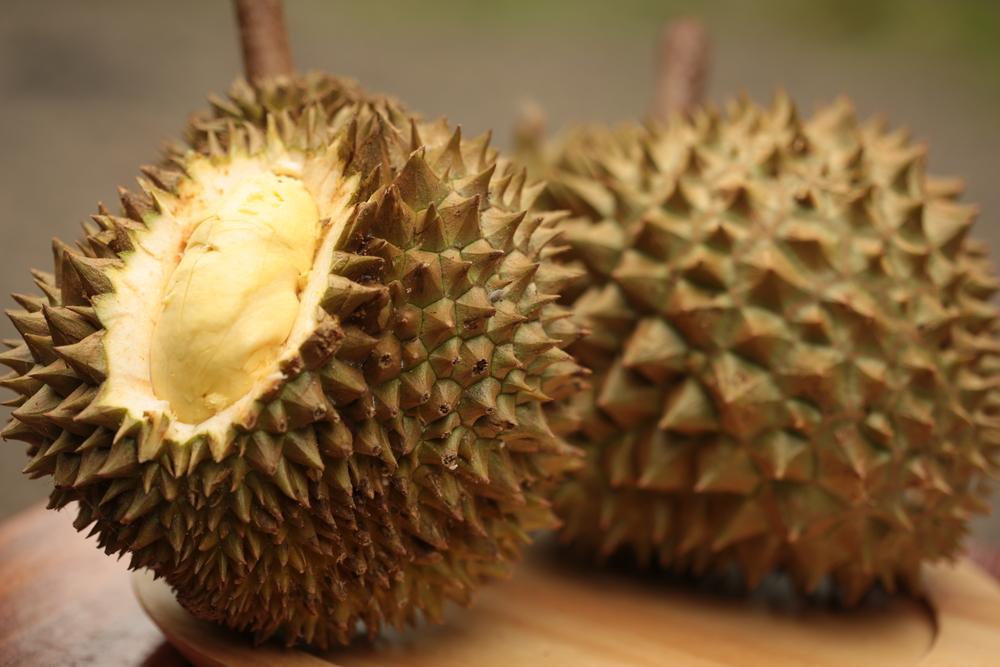 Durian Pho Khao Fai (ทุเรียนภูเขาไฟ)