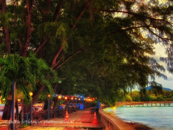 cafe along the water under trees evening sunset impression