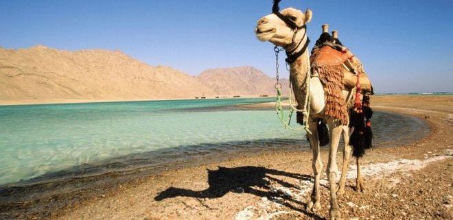 Все о Египте: неразгаданная страна