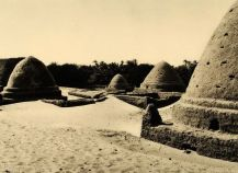 Оазис Бахария