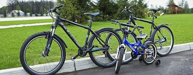 велосипедные и конные прогулки